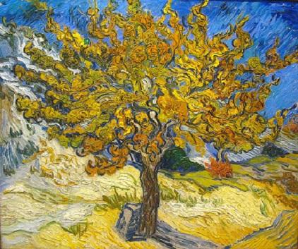 עץ התות / וינסנט ואן-גוך קרדיט: chimichagua