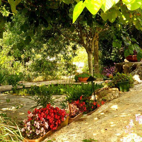 גן פרטי 1, מנוף
