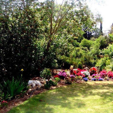 גן פרטי שכניה